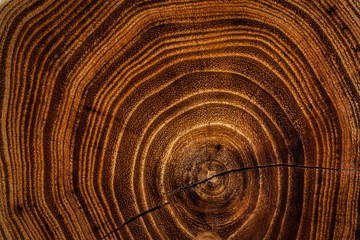 Acacia wooden dark texture background