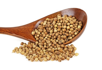 Coriander seeds in wooden spoon isolated on white background