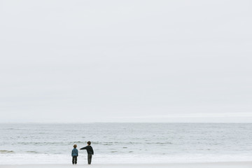 Rear view of brothers standing at beach against sky