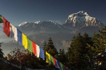 Bhuddism flags with Dhaulagiri peak in background at sunset in Himalaya Mountain, Nepal.