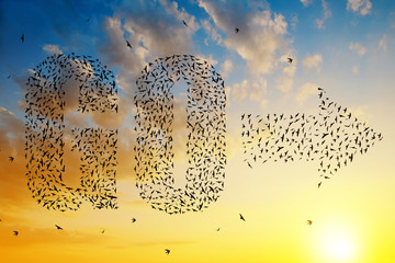 Silhouette of birds flying in text go and arrow formation at sunset sky.