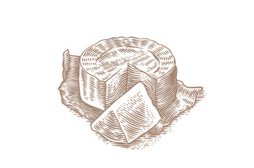 Camembert on the paper