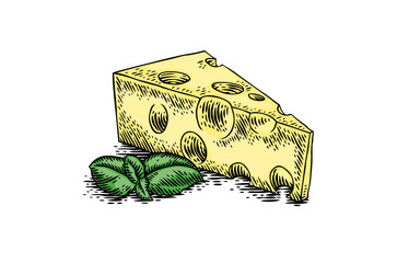 Piece of cheese with basil