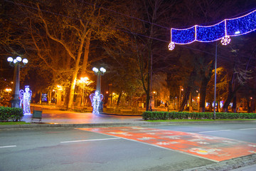 Beautiful scene of Kutaisi in a New Year night. City night park in autumn with paths strewn