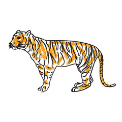 isolated sketch of a tiger is standing