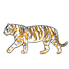 isolated sketch of a tiger is coming