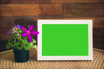 green screen isolated frame