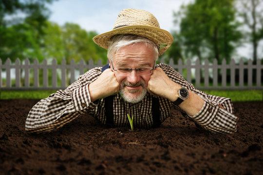 Gärtner guckt Pflanze beim Wachsen zu