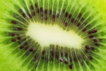 Slice of kiwi, macro photography