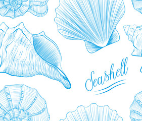 Sea shells Hand drawn blue linear vector illustration.Marine wildlife decorative designer isoalted graphic art element isolated on white background.