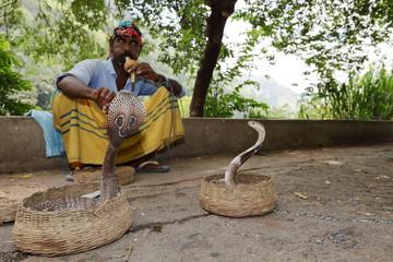 Schlangenbeschwörer mit Kobra in Sri Lanka