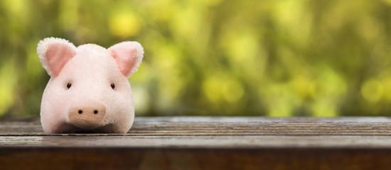 Pink pig, piggy-bank - web banner of new year money savings concept