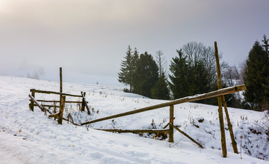 wooden fence on snowy meadow. lovely rural scenery on a foggy morning. location Pylypets, Ukraine