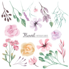 Beautiful watercolor flowers, stems and leaves. Watercolor floral clipart, design elements, collection, set isolated on white