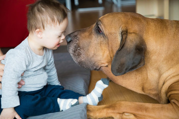 Portrait of cute baby boy with Down syndrome with big dog