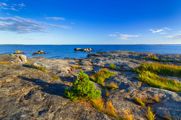 Beautiful coastline of Baltic sea, Sweden