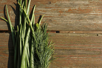 bunch of fresh chives and dill on wooden background