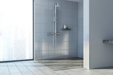 Gray wall bathroom, shower stall