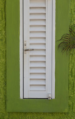 Abstract Green and White Window Pane and Shutter