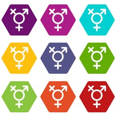 Transgender sign icon set color hexahedron