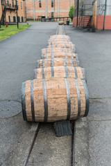 Fototapete - Line of Bourbon Barrels in the Rain