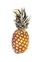 the harvest beautiful ripe tropical fruit pineapple