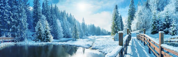 Зимний лес в Карпатах.  Озеро Vito