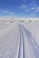 Fototapete - Cross-country trail through a snowy landscape in Trysil, Norway
