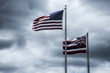 Flags of the USA and State Hawaii Wall mural