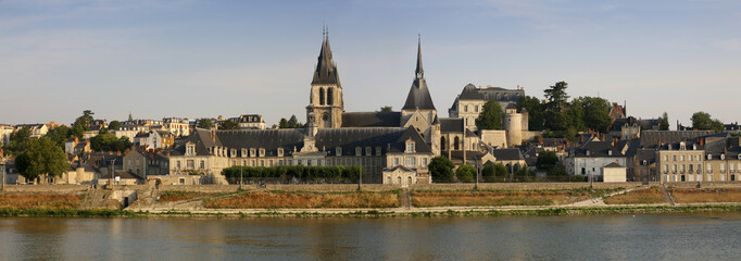France, Blois, view to the city with Saint-Louis Cathedral