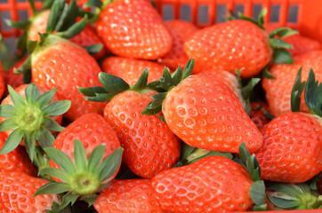 Closeup on strawberries in basket