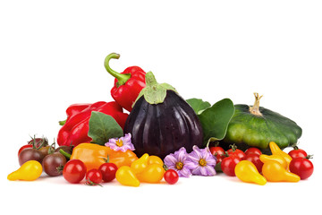 Group of autumn vegetables