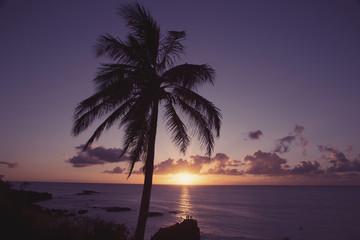 USA, Hawaii, Oahu, Waimea Bay in the evening