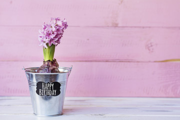 Pink  Hyacinth Flower in a Metal Pot with Happy Birthday Text on a  Wooden  Background