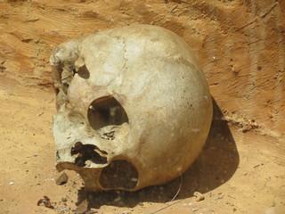 Calavera skull indigena