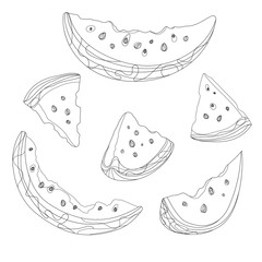 Vector set of slices of watermelon. Black and white drawing by hand. Linear Art. Tattoo. Colletion of summer fruits.