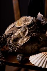 Fresh unopened oyster shells.