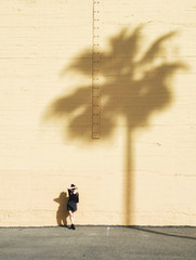 Young woman standing next to palm tree shadow