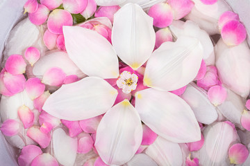 harmony, tenderness, spa concept. there are adorable pieces of different flowers placed in clean water, pink and white petals of blooming flowers cover all the surface of it