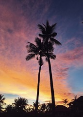Tropical Sunset Sky