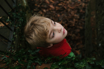 From above view of a young boy leaning against a brick wall covered in ivy.