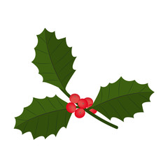 c with berry and leaves. Christmas symbol. Vector illustration.