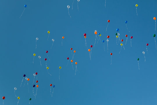 Colorful party balloons floating in the sky
