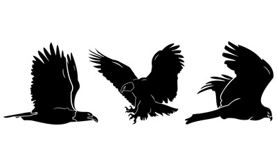the silhouette of three flying eagles