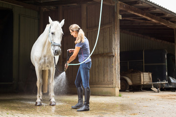 Woman Showering Her Horse Wall mural