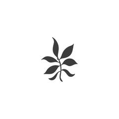 leaf icon. sign design