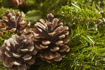 closeup of a Christmas Wreath with pine cones and hemlock sprigs