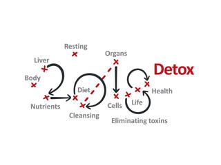 Detox 2018 red marks white background vector