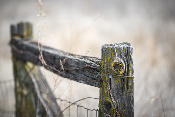 Old weathered fence post