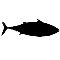 Mackerel Silhouette Vector Graphics